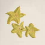 Star Fruit 1