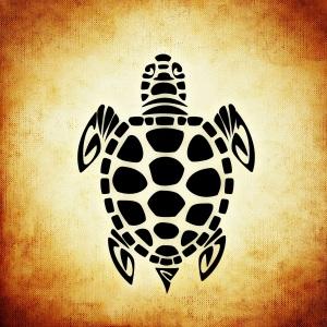 turtle-tan